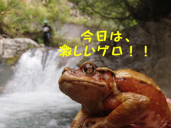 20120921am1.jpg