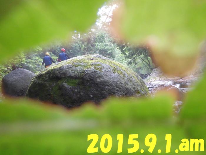 2015.9.1..jpg